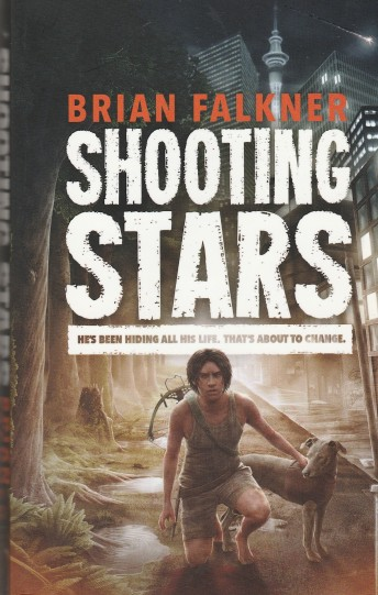 Image result for Shooting Stars by Brian Falkner