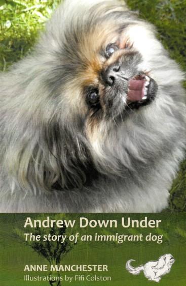 Andrew down under
